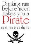 Drinking Rum Pirate Alcoholic Vintage Style Metal Sign Wall Plaque 15X20cm